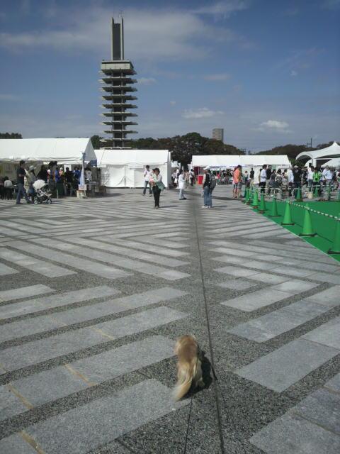 駒澤公園なう